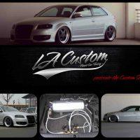 Patrick´s Audi S3 mit GAS V2 Airride